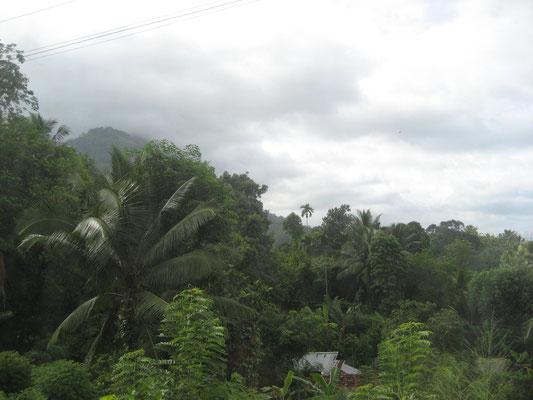 Auf dem Weg nach Kandy