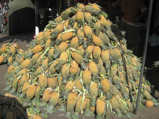 Ananasberge