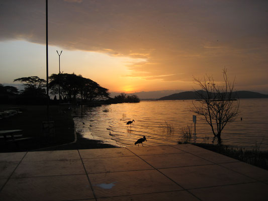 Sunrise at lake victoria