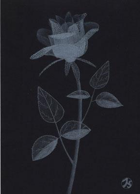 Eine Rose für dich  250.-€