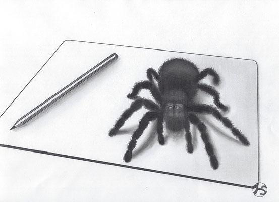 3D - zeichnung  270.-€