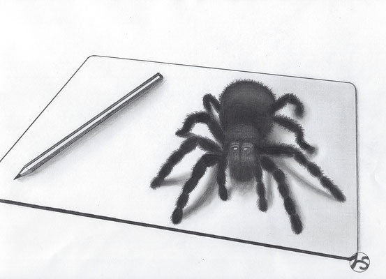 3D - zeichnung  200.-€