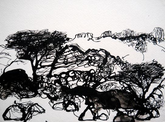 encre de chine 16, 30x21cm, 2010, Algérie