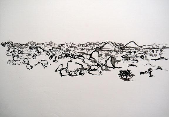 encre de chine 4, 42x59cm, 2010, Algérie