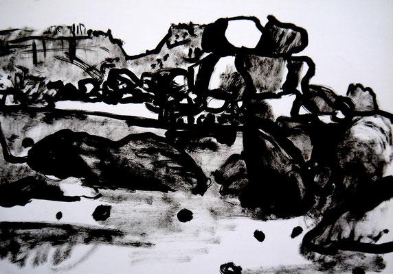 encre de chine 18, 30x21cm, 2010, Algérie