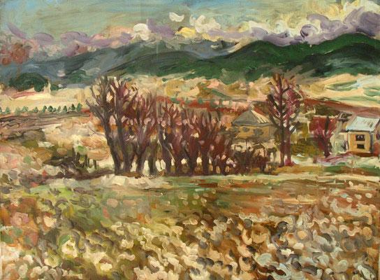 72x53cm, huile, Bulgarie, 2007