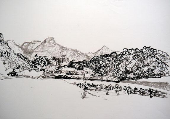 encre de chine 12, 42x59cm, 2010, Algérie