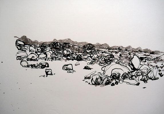 encre de chine 13, 42x59cm, 2010, Algérie