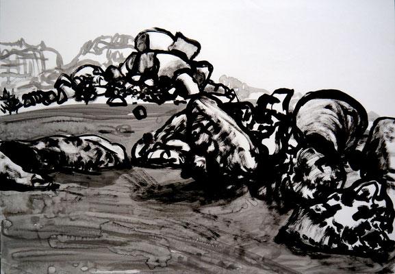 encre de chine 8, 42x59cm, 2010, Algérie