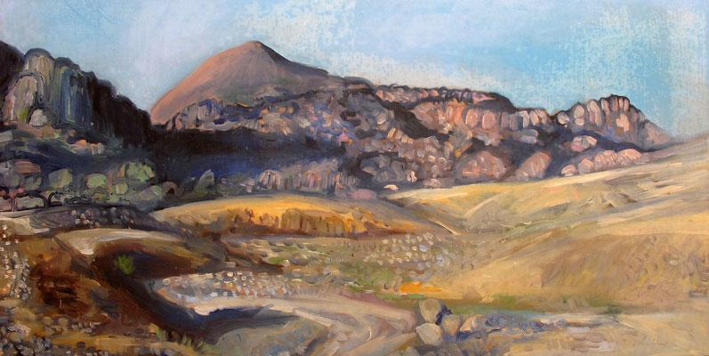 Sahara 20, 120x60cm, huile, 2010, Algérie