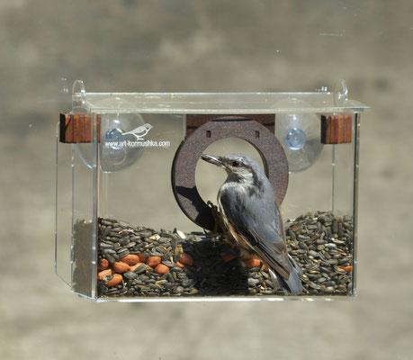 Фотокамера люкс летково-лотковая кормушка для птиц