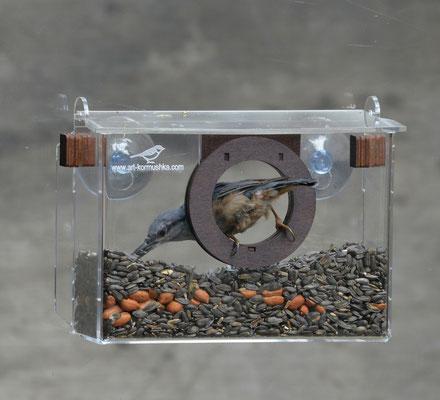 Фотокамера люкс - оконная кормушка на присосках