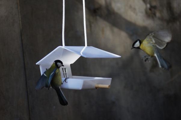 Кормушка для наблюдения и подкормки птиц