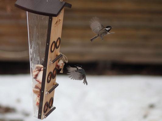 Кормушка для птиц российского производства