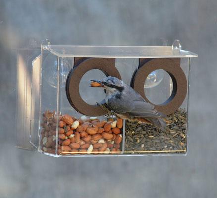 Кормление птиц на окне