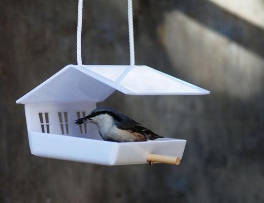 Кормим птиц красиво