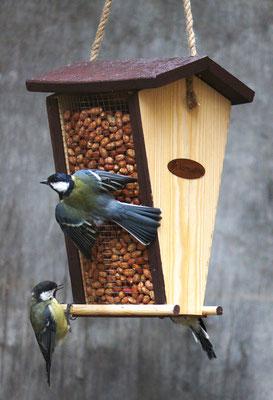Кормушка для птиц с арахисом