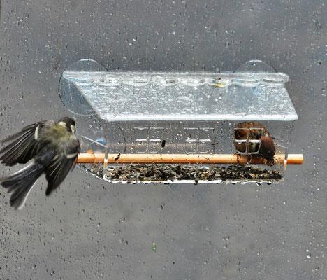 Кормушка на окно Веранда удобна для птиц в любую погоду