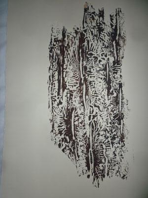 Holzdruck - Borkenkäfer-1, Blatt 40 x 50 cm
