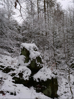 Der sogenannte Opferstein, um ihn herum das große Schrecken. Vor ein paar Jahren sah es noch ganz anders hier aus, viel mystischer.