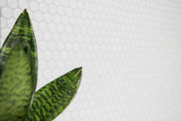 Mosaico diametro 1,9 cm Bottone Bianco lucido