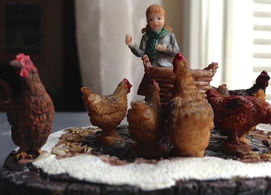 Feeding chicken - 609130 - Vue 2
