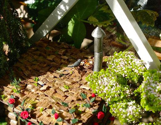 L'échappée belle - Un nid sur le toit