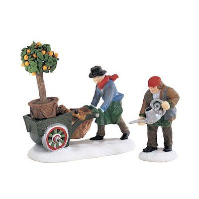 #58458-Master gardeners