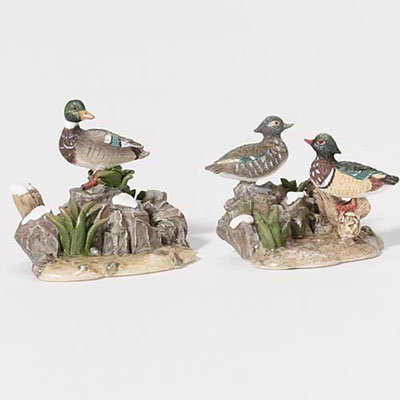 Mallard and wood duck - #56-53002 - Vue 1