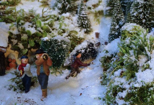 Village Noël /Christmas Village 2014, les hauteurs: Abattage des sapins