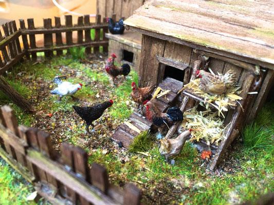 Vieille grange de Sully: Gros plan sur la basse-cour