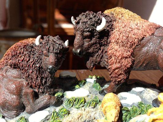 Buffalo on the prairie - #56-52865 - Vue 3