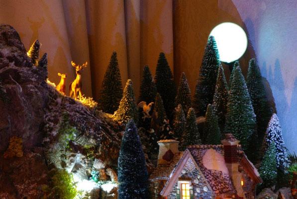 Village Noël/Christmas Village 2013, la nuit: Clair de lune et faune locale