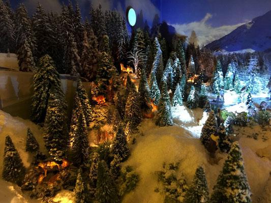 Village de Noël/Christmas Village 2014 de nuit: Vie animale nocturne
