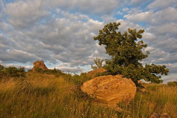 Naturdenkmal Kogelsteine