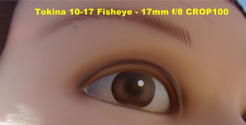 www.beanico-photo.fr - test du Tokina Fisheye 10-17mm