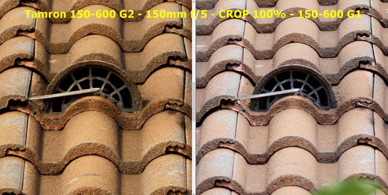 Canon 5D + Tamron 150-600 G1 et G2 - comparatif piqué - beanico-photo