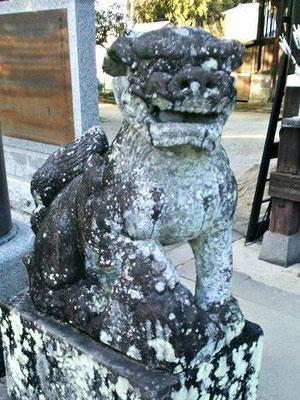 蠣久天満宮狛犬(阿形)
