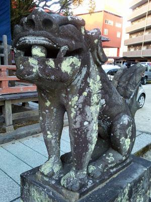 本庄神社の狛犬【阿形】アップの写真
