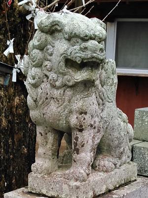 陶山神社の狛犬03番【阿形】アップの写真