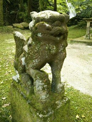 後鳥羽神社の狛犬【吽形】アップの写真