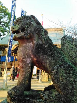 與止日女神社の狛犬【阿形】横の写真