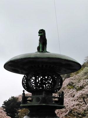 陶山神社の狛犬02番【阿形】正面の写真