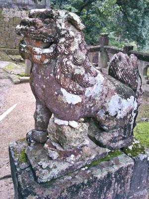 陶山神社の狛犬05番【阿形】の写真