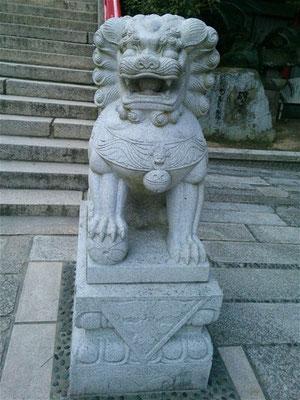 赤間神宮の狛犬01番【阿形】全体像の写真