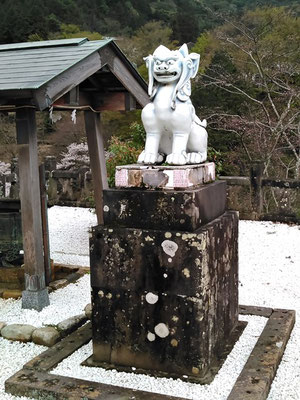 陶山神社の狛犬04番【阿形】全体像の写真
