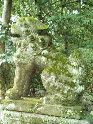湊川社の狛犬【阿形】横から撮影