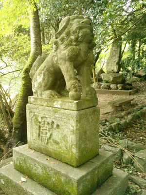 湊川社の狛犬【吽形】全体像の写真