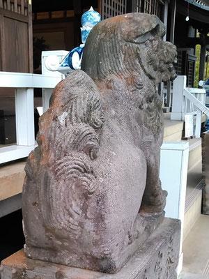 陶山神社の狛犬08番【吽形】お尻の写真