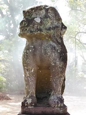 與止日女神社の狛犬【吽形】正面の写真